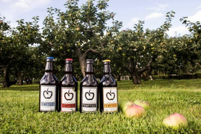 Tempted cider range